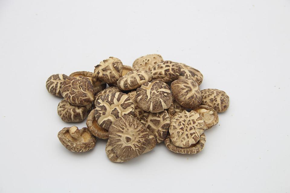 Funghi Shiitake Interi Biologici Disidratati Midzu 1 Kg